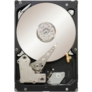 Seagate ST500NM0011 Constellation ES